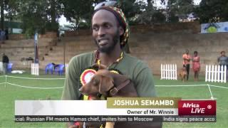 More Than 100 Top Dogs Compete In Kampala