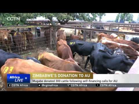 Zimbabwe's Donation To AU: Mugabe Hands In 1 Million USD From Sell Of Cattle He Donated