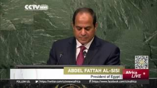 Egypt Making Gains Against Militants