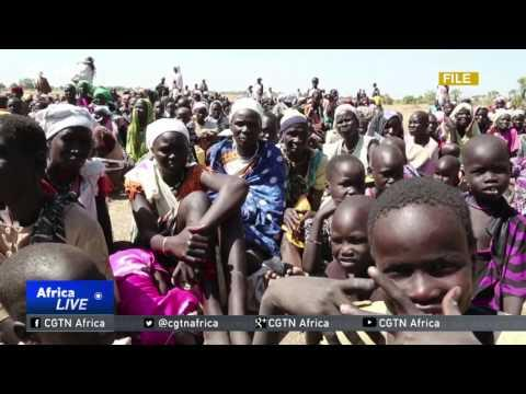 UN Warns Thousands Of Displaced Nigerians In Need Of Assistance