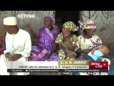 UNICEF Calls Attention To C. A. R. Refugees In Cameroon