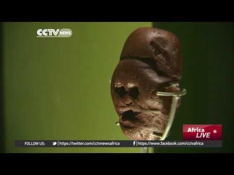 South Africa's Makapansgat Pebble A Big Attraction At London Museum