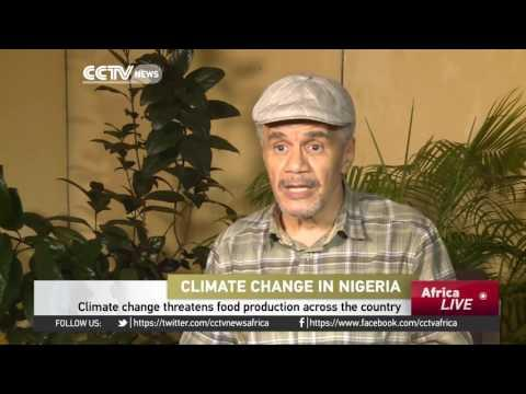 Climate Change Threatens Food Production Across Nigeria