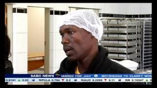 Soshanguve Launches A Youth Owned Bakery