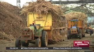 Kenya Gets Extension To Continue Importing Cheap Sugar