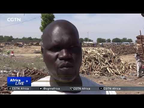 Boko Haram Kidnap 50 Loggers In Nigeria