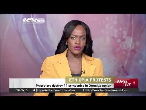 Protesters In Ethiopia Destroy 11 Companies In Oromiya Region