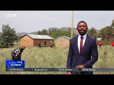 Plans To Revolutionize Farming In Tanzania Taking Shape