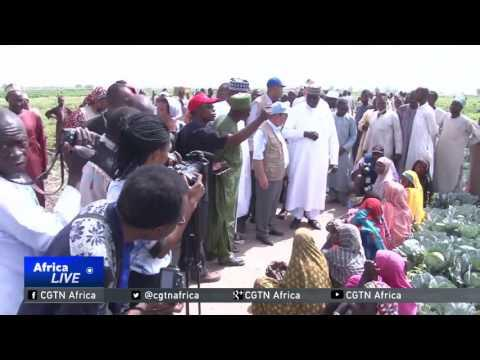 FAO Warns Of A Bigger Catastrophe In Lake Chad Basin