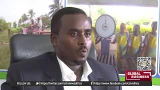 Somali Politicians Propose New Law To Limit Foreign Workers