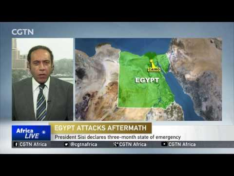 Egyptian President Sisi Declares Three-month State Of Emergency