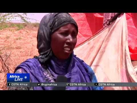 Families Try To Survive On Black Tea In Somaliland