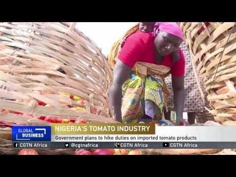 Nigerian Government Plans To Hike Duties On Imported Tomato Products