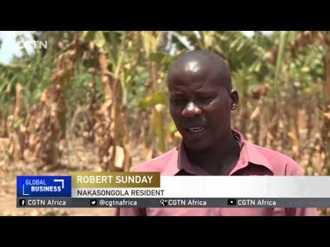 Ugandan Gov't Seeking $15 Million To Provide Food To Vulnerable Households