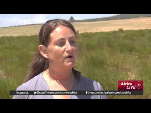 South Africa El-nino Concerns