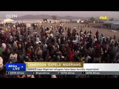UNHCR Says Nigerian Refugees Have Been Forcibly Repatriated From Cameroon