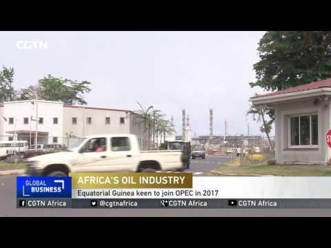 Equatorial Guinea Keen To Join OPEC In 2017