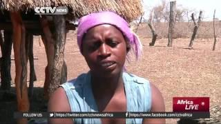 Zimbabwe Increases Preparations For Cropping Season