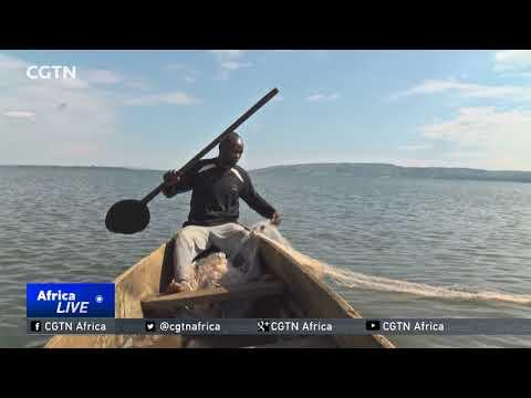Lake Victoria Risks Drying Up Due To Pollution
