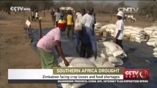 Zimbabwe Facing Crop Losses And Food Shortage