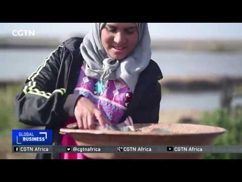 The Underwater Fisherwomen Of Kafr El-Sheikh
